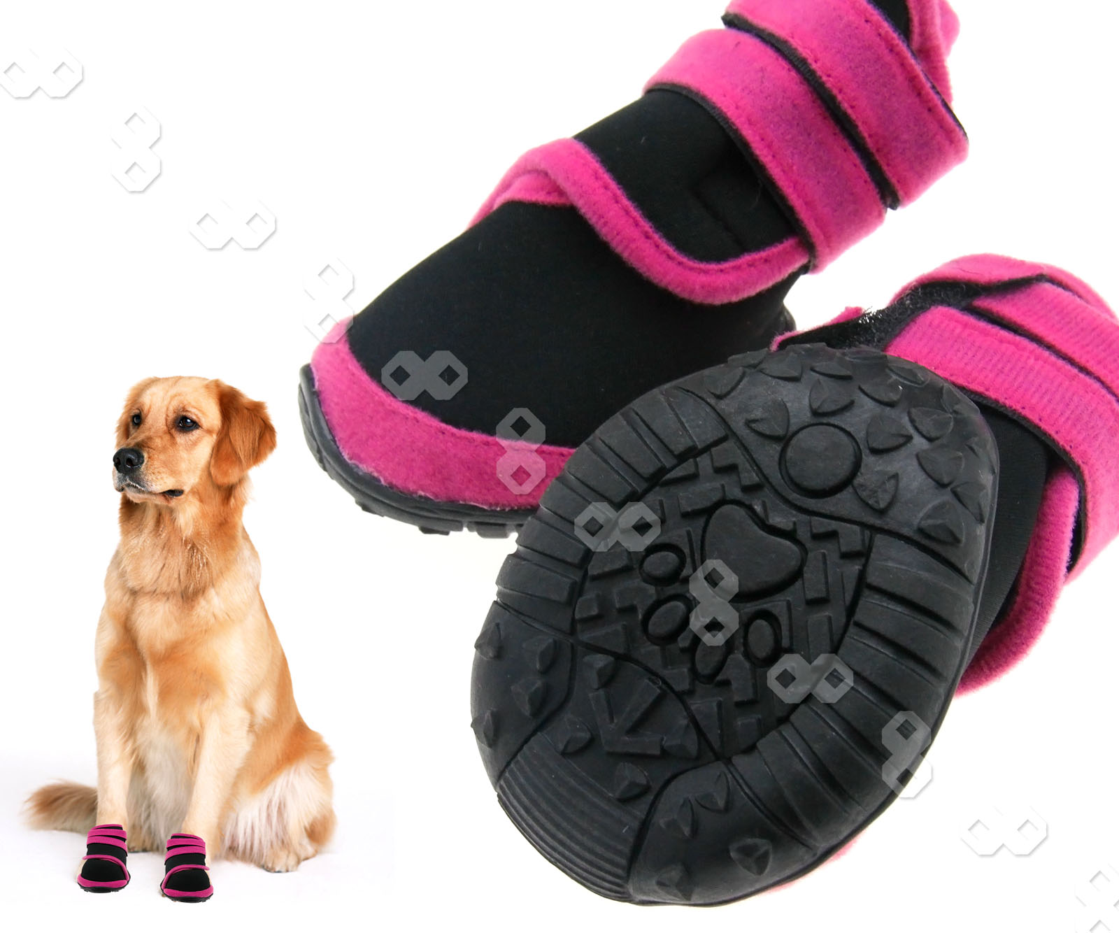 Disposable Dog Shoes Uk