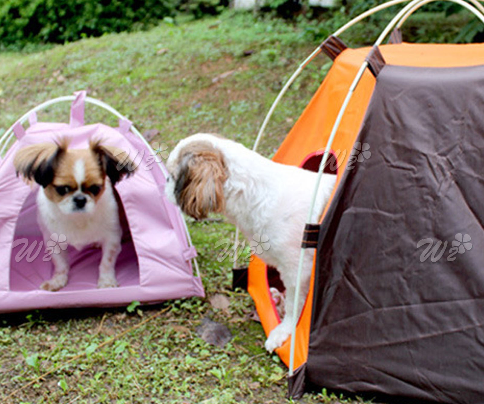 Folding Portable Pet Tent Puppy Dogs Cats Bed Indoor Outdoor House Waterproof & Folding Portable Pet Tent Puppy Dogs Cats Bed Indoor Outdoor House ...
